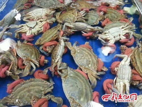 长春这家市场上卖的飞蟹被绑上了厚皮筋。按照螃蟹价卖出的厚皮筋,一根有时能卖到8块钱 记者 闫硕 摄