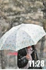 1擎伞冒雪路上行本报记者孙晶磊拍摄于人民大街
