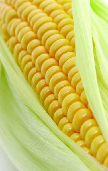 """为何大多数男人都喜欢""""黄色""""食物?"""