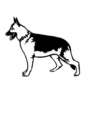 木羊犬的简笔画