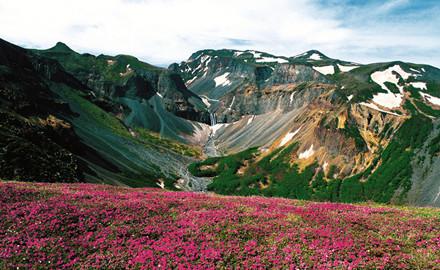天亿网 长白山春天森林图片 > 长白山春天摄影图__自然风景  长白山