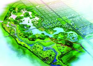 摄影 张扬  金钱堡垃圾场治理后将成长东北城市生态湿地公园的园中园。