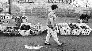 摄影 石天蛟  菜价如此便宜,仍很少有人问津。