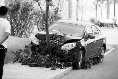 轿车前脸陷入树中