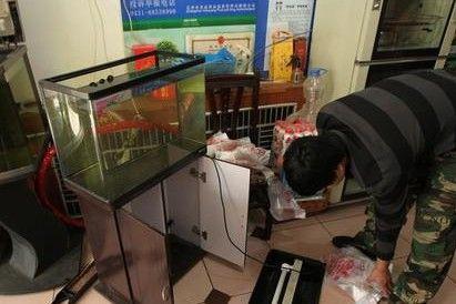 饭店失窃7条鱼